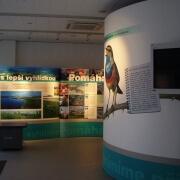 Presentation wall Information center
